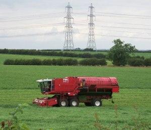 Harvesting_Peas_near_White_Hart_Farm_-_geograph.org.uk_-_1393419