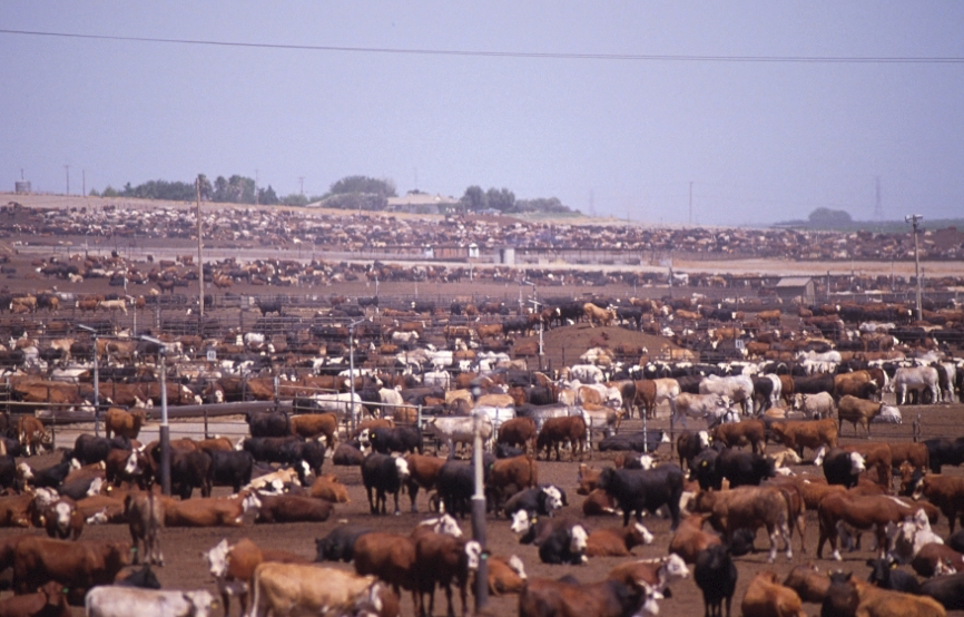 Why Taxpayers Need A Housemate Agreement With Farmers Guest Blog